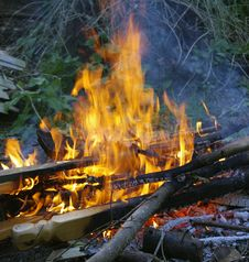 Free Campfire, Fire, Bonfire, Flame Royalty Free Stock Image - 132087726
