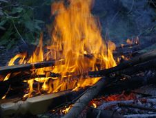 Free Campfire, Fire, Geological Phenomenon, Flame Royalty Free Stock Photo - 132087805
