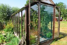 Free Greenhouse, Outdoor Structure, Plant, Garden Royalty Free Stock Image - 132187886