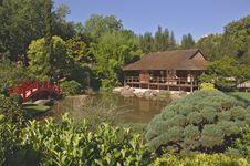 Free Vegetation, Nature Reserve, Garden, Botanical Garden Stock Image - 132188241