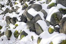 Free Rock, Snow, Winter, Leaf Stock Photography - 132189062