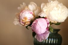 Free Pink Flowers In Vase Royalty Free Stock Photography - 132219507