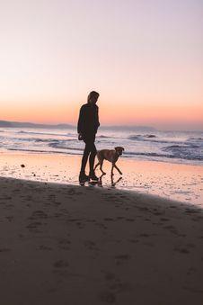 Free Woman Walking With Dog At Shore Royalty Free Stock Photos - 132219548