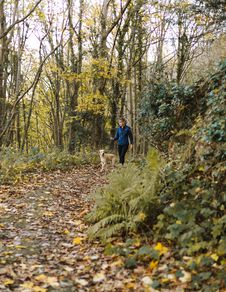 Free Woman And Dog Walking At Woods Stock Images - 132219554