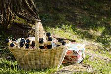 Free Picnic, Grass, Plant, Tree Stock Photography - 132274062