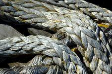 Free Rope, Close Up, Beak Stock Photos - 132275063