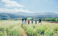 Free Group Of Six People Jumping In A Crop Field Stock Photography - 132568322