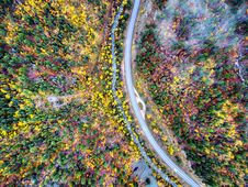 Free Top View Photo Of Road Surrounded By Trees Royalty Free Stock Image - 132670746