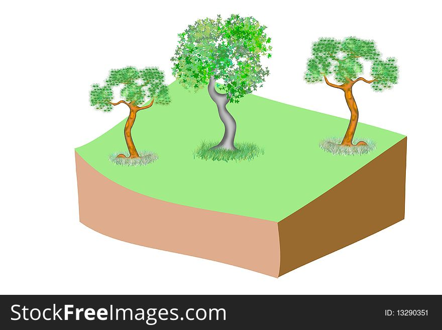 Trees on green grass with part of ground isolated