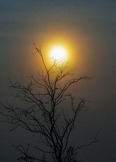 Free Sky, Sun, Tree, Sunrise Stock Photo - 132949450