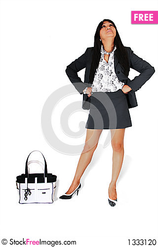 BUSINESS WOMAN WITH HANDBAG Stock Photo