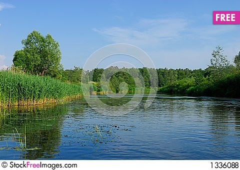 River in the summer day Stock Photo
