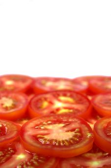 Free Tomatoes Stock Photography - 1332932