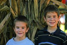 Free Boys In Pumpkin Patch Royalty Free Stock Image - 1333216