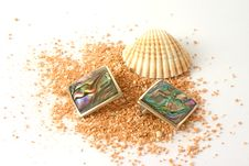 Free Shell And Earrings On Beachsand Royalty Free Stock Photos - 1333588