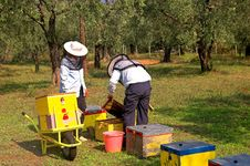 Free Bee Boxes And  Bee Keepers 3 Stock Images - 1334514