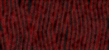Red And Black Tiger Snake Print Stock Photos