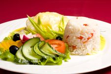 Free Gratinéed Chicken With Risotto Stock Image - 1337791