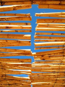 Free Bamboo Royalty Free Stock Image - 1338946