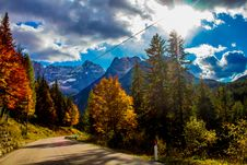 Free Concrete Road Surrounded With Pine Trees Under Blue Sky Royalty Free Stock Photo - 133049605