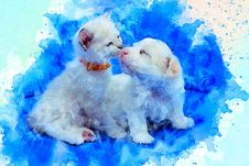 Free Blue, Vertebrate, Dog Like Mammal, Carnivoran Royalty Free Stock Photos - 133462938