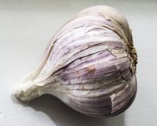Free Garlic, Vegetable, Elephant Garlic, Cockle Royalty Free Stock Photos - 133463198