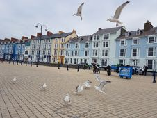 Free Town, Property, Sky, Town Square Royalty Free Stock Photos - 133463738