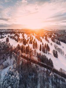 Free Empty Road And Pine Trees On Snowy Field During Golden Hour Stock Photos - 133489273