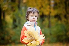 Free Boy Carrying Maple Leaf Royalty Free Stock Photo - 133729235