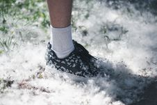 Free Person Stepping On Snow Royalty Free Stock Image - 133729256
