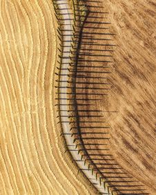 Free Aerial Photography Of Pathway Surrounded By Beige Field Stock Photo - 133729610