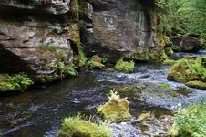 Free Water, Stream, Nature, Nature Reserve Stock Photo - 133774780