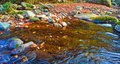 Free Autumn Forest Stream Royalty Free Stock Images - 13387479