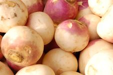 Free Biological Food Stock Photo - 13386730
