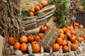 Free Pumpkins On The Rocks Royalty Free Stock Photography - 1348657