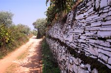 Free Path In Olive Trees Stock Photos - 1340963