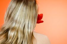 Free Blond And Tulip Royalty Free Stock Photos - 1343098