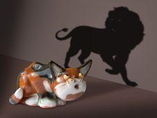 Free Afraid Cat Stock Image - 1343301