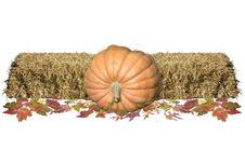 Free Harvest Decore Stock Image - 1343341
