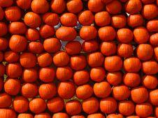 Free Pumpkins1 Stock Photography - 1349972