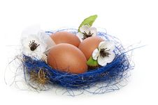 Free Easter Eggs Stock Photo - 13409310