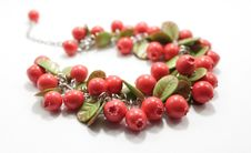 Free Fruit, Pink Peppercorn, Berry, Jewelry Making Stock Photography - 134004862