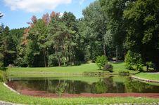 Free Nature, Garden, Botanical Garden, Vegetation Stock Photo - 134005790