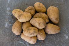 Free Root Vegetable, Potato, Yukon Gold Potato, Produce Stock Images - 134005864