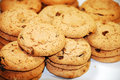 Free Chocolate Chip Cookies Royalty Free Stock Image - 13426266