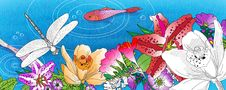 Free Beautiful Flowers, Fish And Dragonfly Royalty Free Stock Images - 13472809