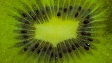 Free Kiwi Stock Photos - 13479473