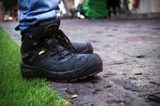 Free Footwear, Shoe, Sneakers, Grass Stock Images - 134700544