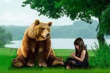 Free Brown Bear, Grizzly Bear, Mammal, Bear Stock Photos - 134700943