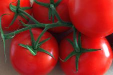 Free Natural Foods, Vegetable, Plum Tomato, Tomato Royalty Free Stock Photos - 134701048